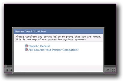 図4:「Human Verification」と称したウィンドウの例