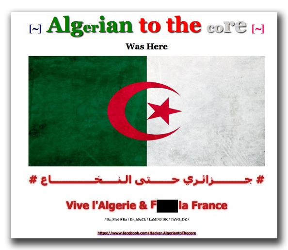 図3:書き換えられたフランスの Webサイトの例
