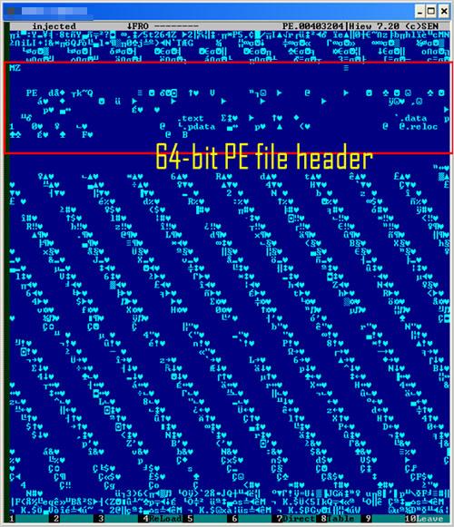 図2:挿入された 64ビット版の「ZBOT」