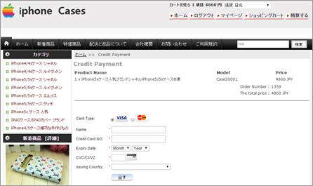 図5:同一のサイバー犯罪者によるものと思われる詐欺サイト上でのクレジットカード決済画面例