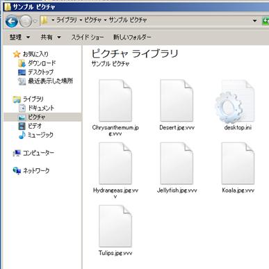 図1:「CrypTesla」により暗号化された画像ファイルの例。拡張子が「.vvv」となっている