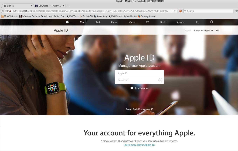 Apple を連想させるシンプルなデザインの偽サイト