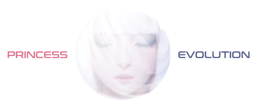 身代金支払いページの「PRINCESS EVOLUTION」のロゴ
