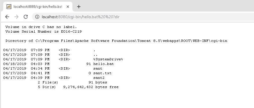 図4: 「Apache Tomcat」でのコマンドの実行