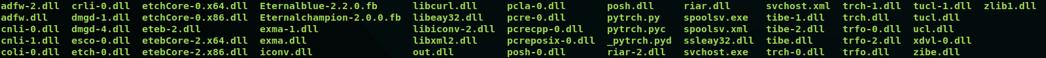 図1: zipアーカイブの中に存在するファイル