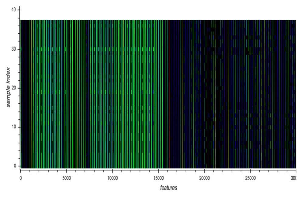あるマルウェアファミリに属する亜種のAPI呼び出しイベントを視覚化した図