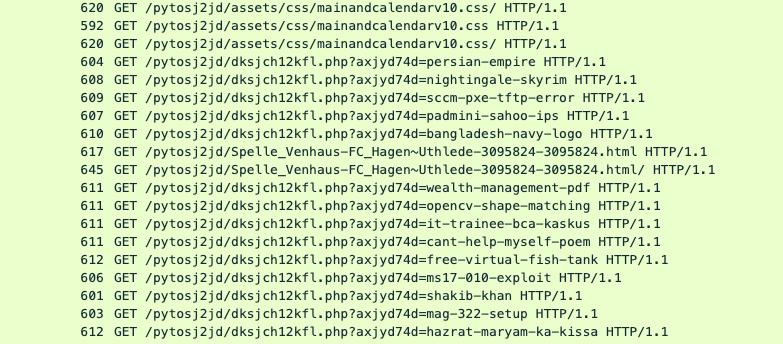 図13:感染したWordPressサイトの「検索エンジン」