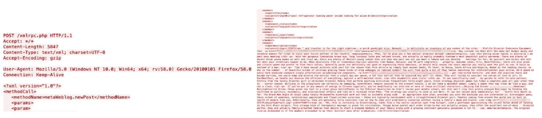 図20:APIの「POST /xmlrpc.php」および「metaWeblog.newPost」(左)、投稿された記事のテキスト例(右)