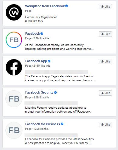 図13:認証バッジが付与された正式なFacebookページ