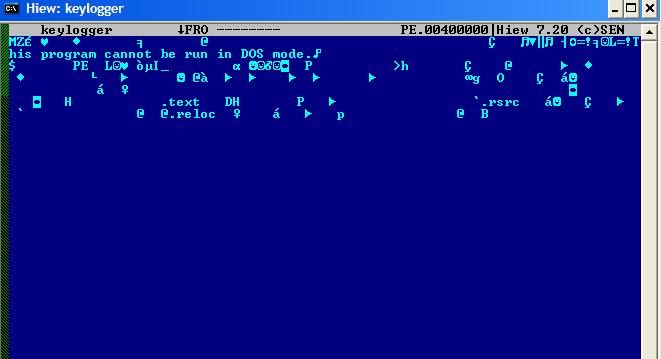 図8:復号されたファイル