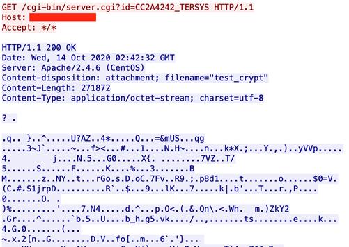 図13:「crypted_pa ckage」をリクエストするために用いられた記述の一例
