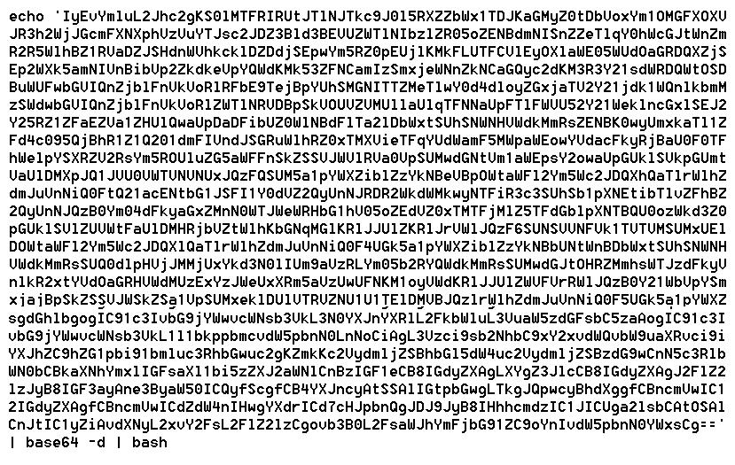 図2:Base64エンコーディングにより置き換えられたコードチャンク