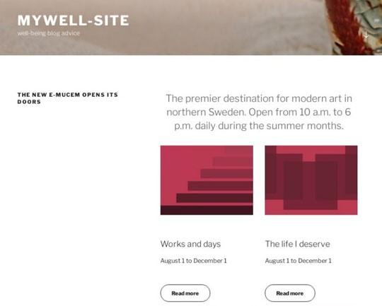 図8:偽のログインページのドメインとして表示されるWebサイト